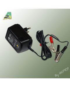 Chargeur batterie au plomb -7612