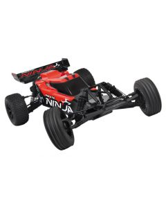 Buggy électrique Pirate Ninja - 1/10e - Ready To Run - T2m
